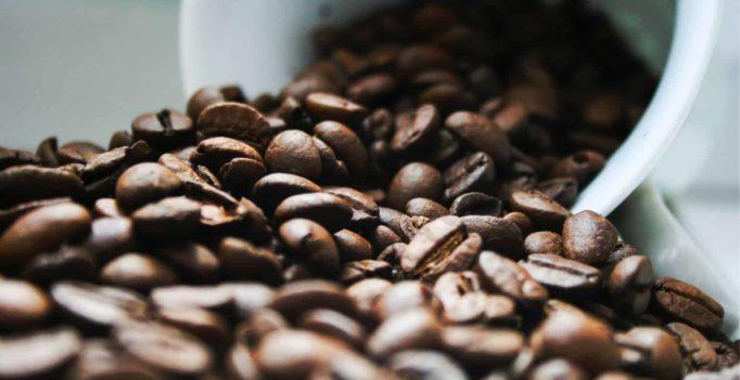 Meilleur café pour AeroPress tirer le meilleur parti de votre machine