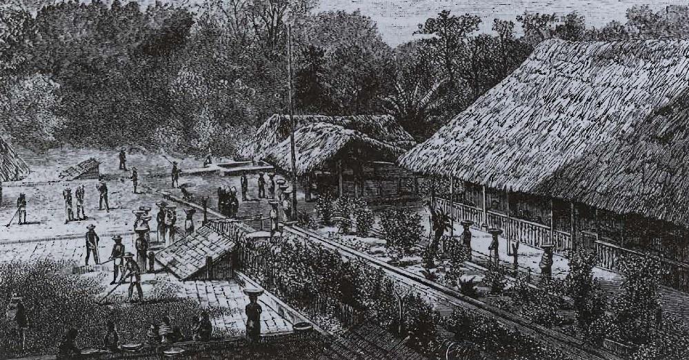 Travailleurs dans une plantation de café en Amérique du Sud, gravure du XlXe siècle de F M. Reynolds