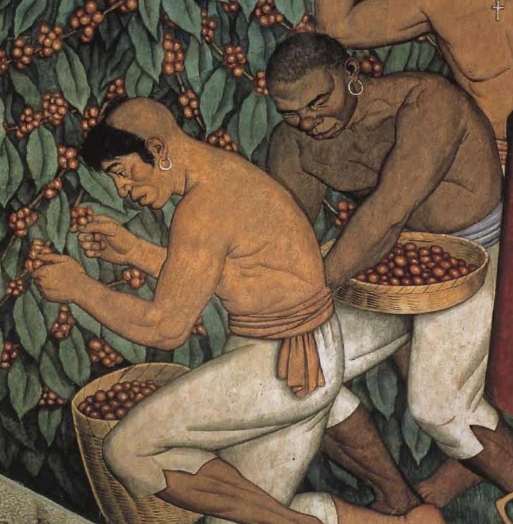 Cueillette du café, tableau de Francisco Miranda (1750-1816).