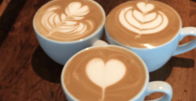 Expresso vs Latte : au pays de la crème et du lait