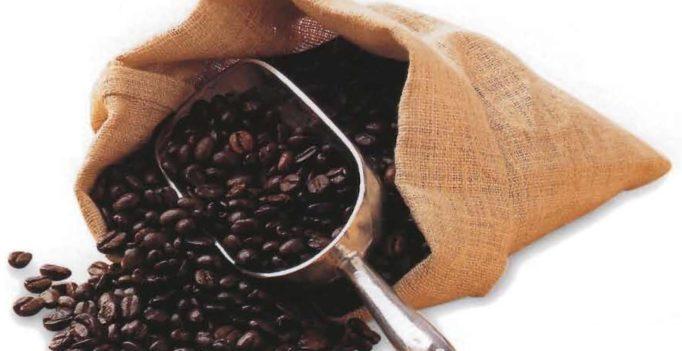 Anatomie du café